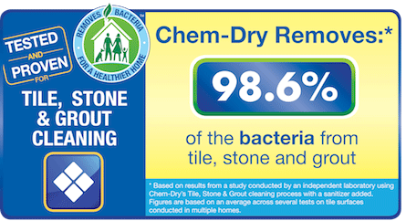 Study showing the effectiveness of Chem-Dry of Rialto's cleaning process